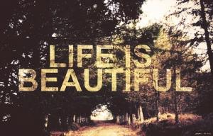 A Vida é Bonita